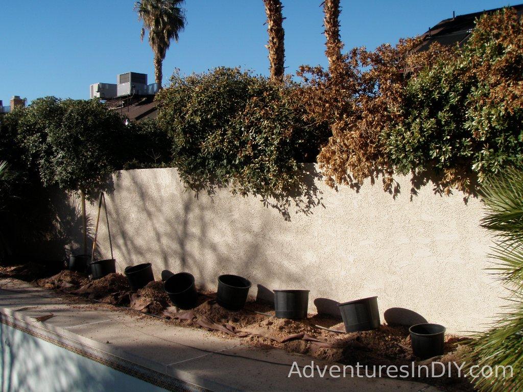 In Ground Planter Pot Gardening Installation And