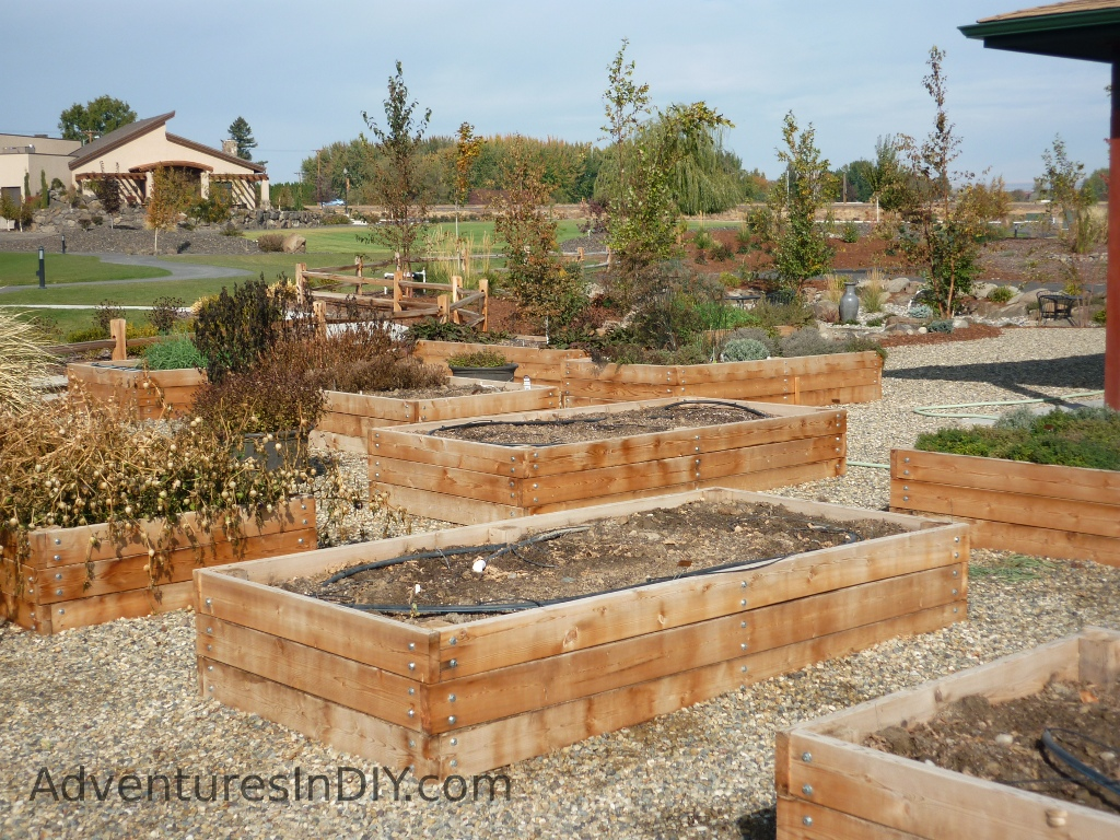 Raised bed gardening ideas adventures in diy for Garden bed design ideas